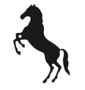 Mustang-Safes.NL1